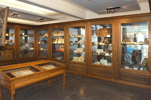 Mus e de royan c m moire vive encyclop dique de royan et sa r gion - Cabinet de curiosite contemporain ...
